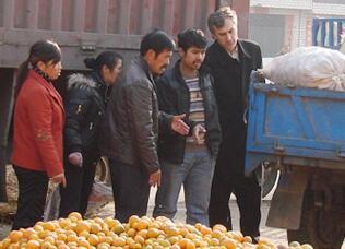 柑桔出口俄罗斯